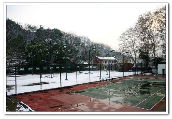 武汉六大网球场洪山体育馆网球最旺_新浪湖北人气男子服图片
