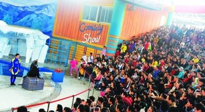 10月3日,极地海洋世界海狮表演现场,挤满了来自全国各地的游客。 记者李子云 摄 详情请看:http://cjmp.cnhan.com/whcb/html/2011-10/08/content_4901013.htm