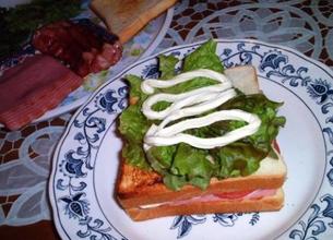 @为你当个脑残粉:三明治早餐