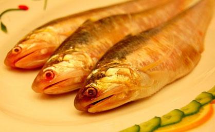 【第27期】天价刀鱼是怎么炼成的?
