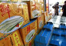 天价长江刀鱼一斤卖八千