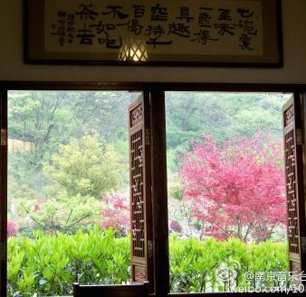 @南京音乐台马莉:牛首山里喝茶是一种礼遇