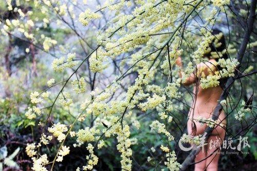 """一位女游客在南丹山体验""""天体森林浴"""" 曾令华 摄"""