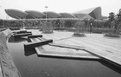 由于暂未投入使用,鲜有市民知道武汉站西广场的景观如湿地一般美丽。记者 陈卓 摄