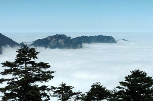 云雾袅绕神农架