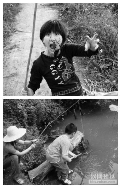 童话在池塘边的动物