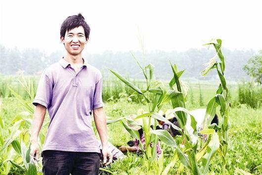 图为:李明攀的稻田成了白鹭的乐园