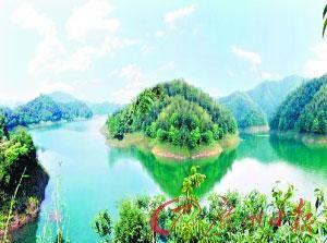 美丽的鄂南大竹海