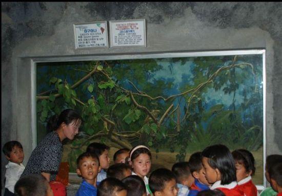 走进神秘的国度 看看朝鲜人的旅游胜地