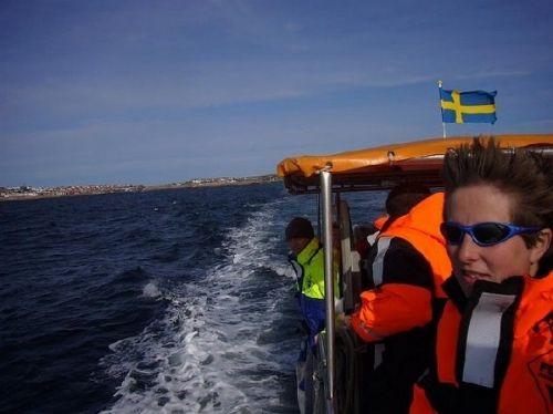 第8名: 瑞典