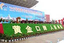 2004(张家港)长江文化艺术节