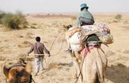 行走印度 难忘的沙漠之旅