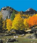 武汉周边自驾寻秋 赴一场童话约会之旅