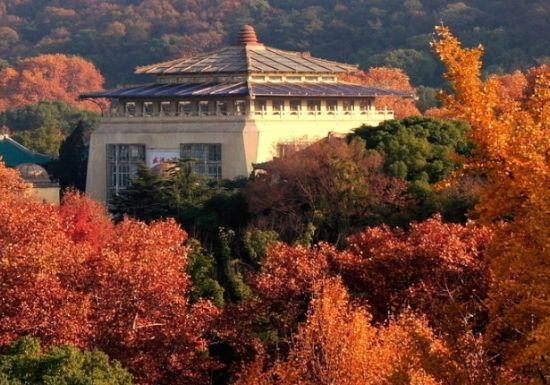 珞珈山上赏秋光