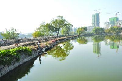 堤岸景观设计图图片