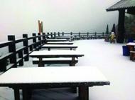 南京天气:今冬首场雪凌晨飘落 气温最低-5℃