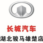 长城汽车湖北骏马4S店