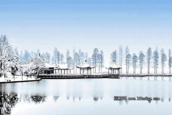 武汉·东湖公园的冬天 作者:佚名