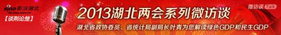 湖北省统计局副局长叶青解读绿色GDP和民生GDP