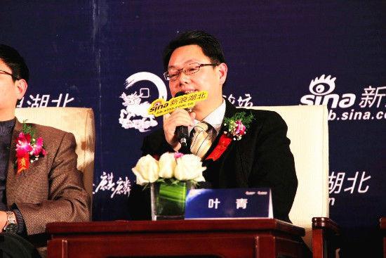 湖北省统计局副局长叶青(资料图)