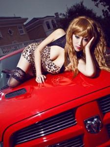 豹纹美女与靓车激情共舞