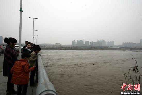 2月16日下午,记者驱车途经临汾市平阳大桥时,数十名群众围聚在大桥两侧,桥下的汾河水流湍急。据当地居民介绍,此时的水位比以往高出近一米左右,水流中还夹杂着树枝和木桩。张云 摄