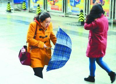 图为昨天上午,在汉口航空路,大风吹得行人无力撑伞。记者金思柳 摄