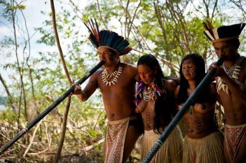 亚马逊热带雨林 阿根廷冰河