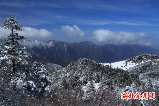 湖北神农架骤降桃花雪