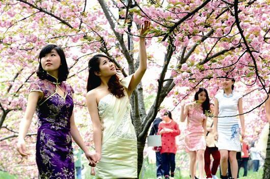 图为:东湖樱园里,怒放的晚樱吸引了不少爱美的女孩。 记者李辉 通讯员冯欣摄