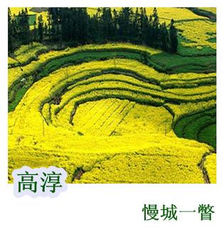 玄武湖莲花别样红 探访南京最古老的赏荷地