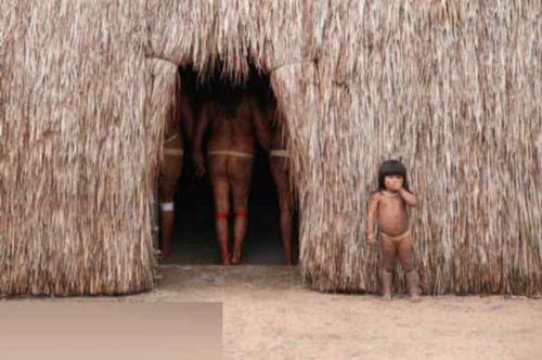 """达都瓦拉村的印第安人叫""""雅马拉比底人"""",约200多人,分别居住在6个大茅草屋里,这些茅草屋环绕着一个足球场大小的操场分布。"""