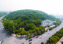 武汉斥4亿为荒山整形:调温效果相当6千台空调