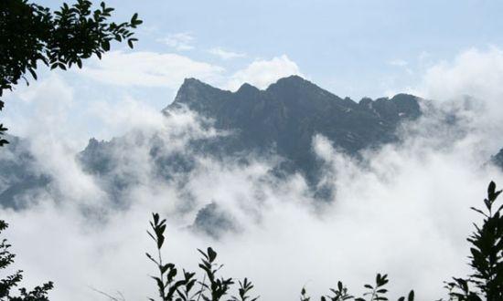 记者从九华山风景区管委会获悉,今年暑期九华山景区将再次推出多项