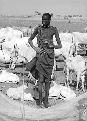 非洲努尔人