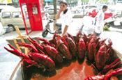 武汉小龙虾20年来同期最高价