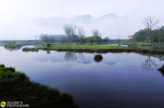 高原湿地 神农架大九湖雾气缭绕