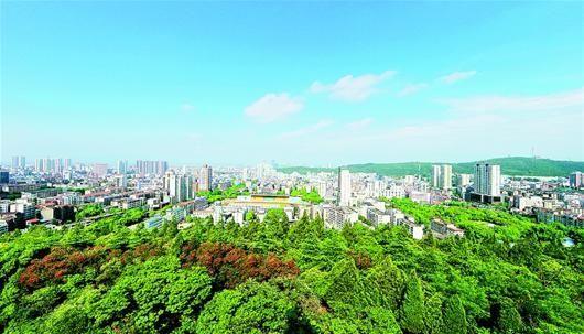 图为:绿拥荆门,城在林中长。(本报视界网 张洪 摄)