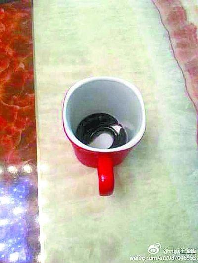 老爸喝水杯盛泥鳅