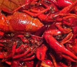 卤虾个头大到惊人的虾蟹馆