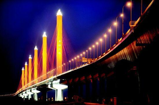 图为嘉绍大桥夜景