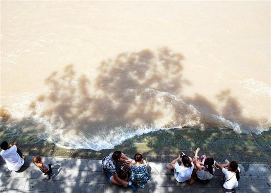图为:昨日江城大风呼呼,却丝毫没有将高温吹走的意思,不少市民聚在武昌江边纳凉 (记者刘蔚丹摄)