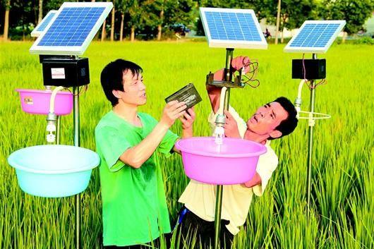 谷城县冷集镇农民陈秀国等正在田间安装、调试太阳能诱虫灯