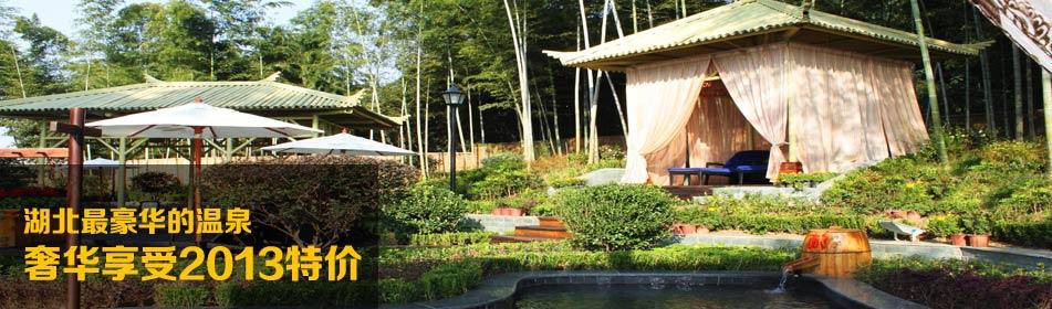 湖北最豪华的温泉 奢华享受  2013特价