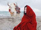 武汉国民女神张辛苑西藏写真演绎天湖边的少女