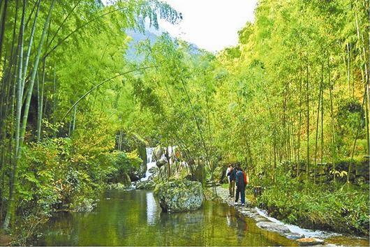 图为:竹影溪