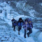 Fox冰川徒步