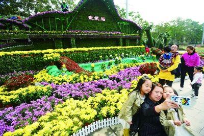 3000余个菊花品种、近百万盆菊花争奇斗艳