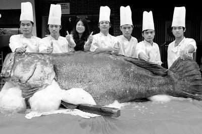 前日下午,一条长2.65米、重683斤的巨型石斑鱼现身东莞大朗镇。