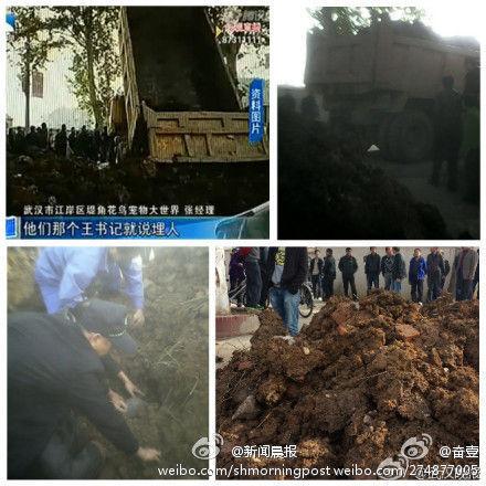武汉村干部被指喊埋人